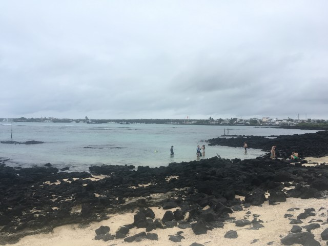 playa estacion snorkeling darwin center