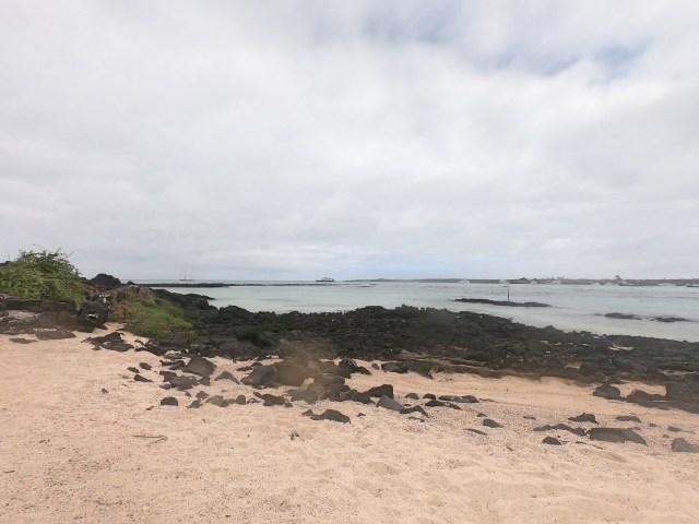 playa estacion