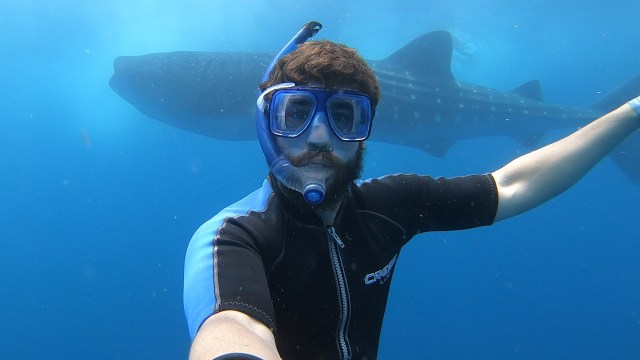 selfie with whale shark