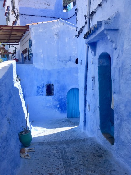 blue pearl in morocco