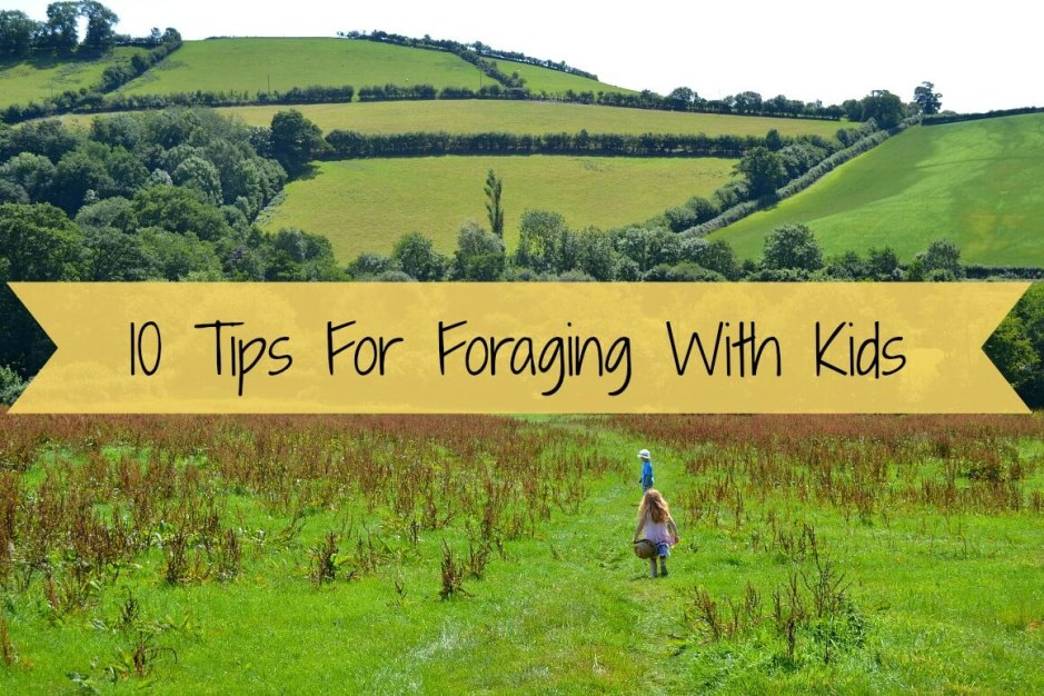 10 Tips For Foraging With Kids