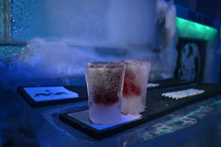The Ice Bar in Budapest