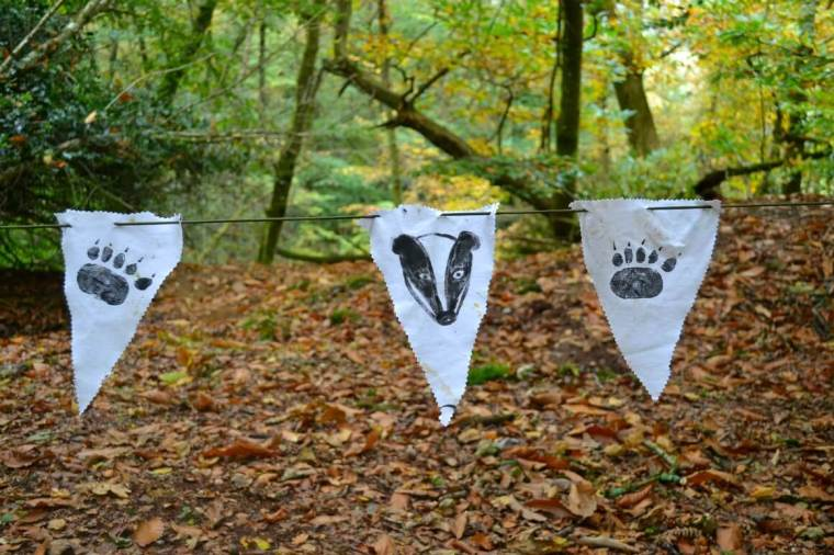 A Touch of the Wild Badgers Den