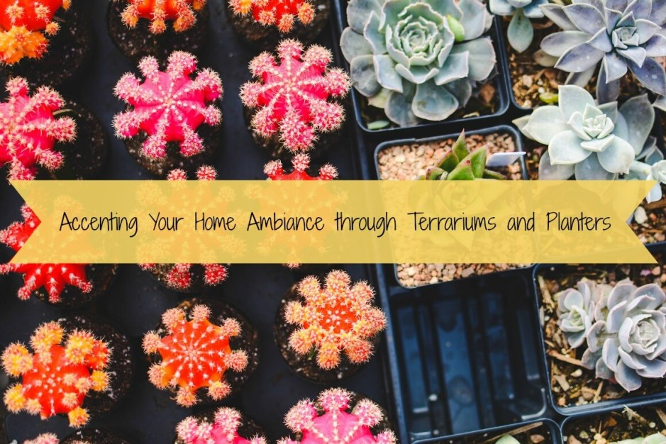 Accenting Your Home Ambiance through Terrariums and Planters