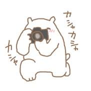 しろくまとカメラ