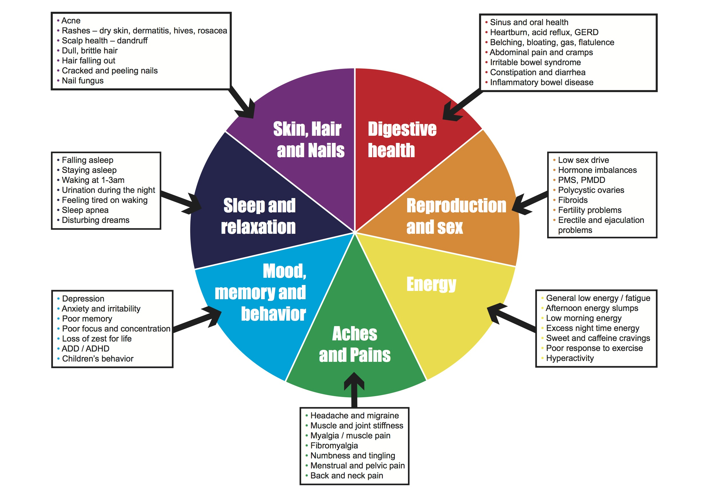 Seven Areas Of Health
