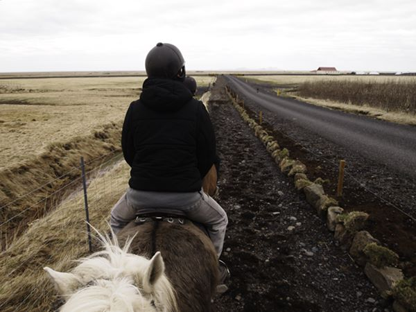 Islande_0088