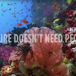 video frame grab: beautiful coral reef and fish