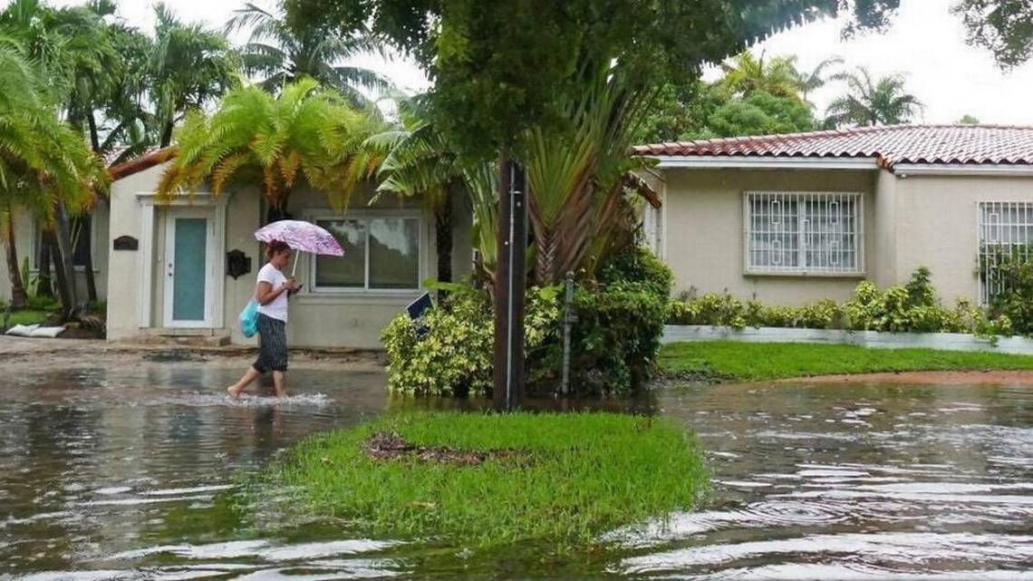 photo: woman walking on flooded sidewalk in Florida. Three newspapers confront one challenge: Sea-level rise is real, South Florida needs all hands on deck — now