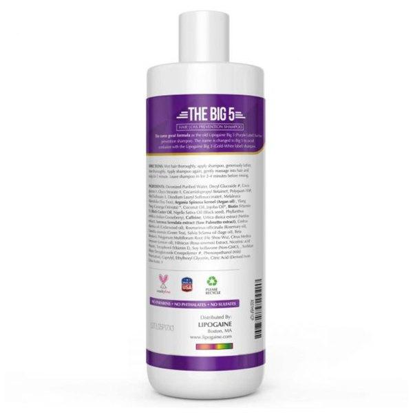 Lipogaine Big 5 Hair Rejuvenating Shampoo