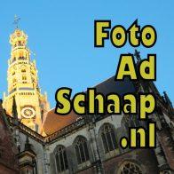 Foto Ad Schaap