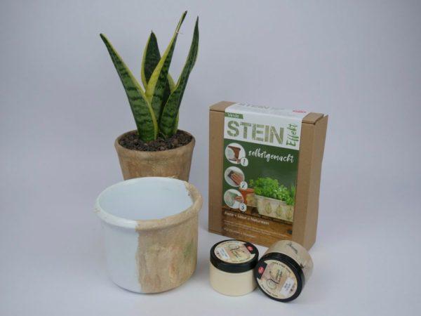 Stein Dekor Produktfoto mit Beispielen - Haas Innengrün - Viva Dekor