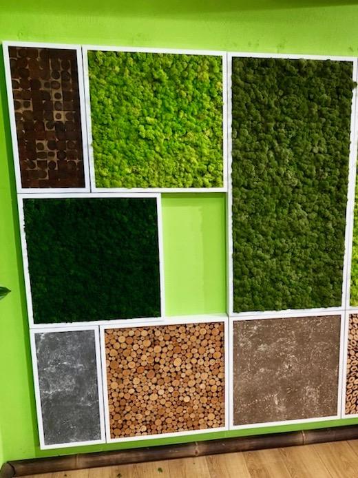 Natures Green Biomontage mit Moos, Stein, Holz - Haas Innengrün