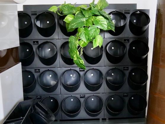 Jago Kunstoff grüne Wand, Pflanzenwand, Wandbegrünung - Haas Innengrün