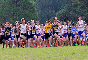 Haas Hall Academy Mastiff Cross Country