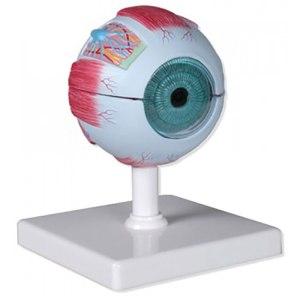 ZKH468E-Eye_6_Parts