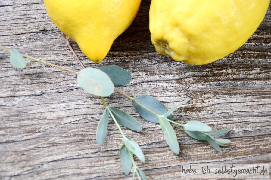 Zitronen mit Eukalyptuszweig