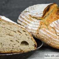 Brot #27 - Weizen Roggen Sauerteig Mischbrot (Weizenmischbrot)