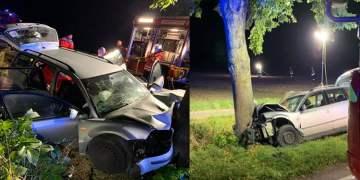 Ağaca çarpan araçtan 2 ölü çıktı