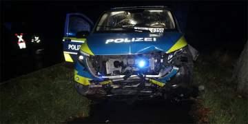 Polis aracı domuz sürüsüne çarptı