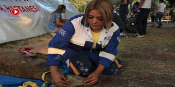 Gurbetçi kadın Manavgat yangınında hayvanların yardımına koştu (VİDEO)