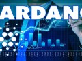 Cardano Hakkında Müjdeli Haberler Gelecek!