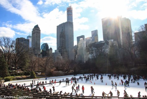 Ice skating rinks in New York City, Wollman Rink, Central Park