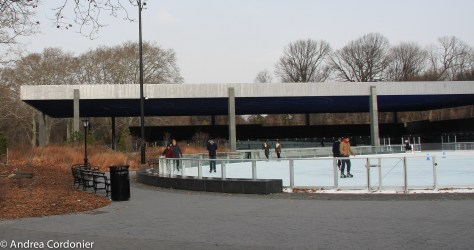 Ice skating rinks in New York City