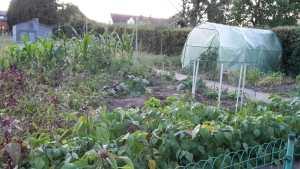 Une place dans une coloc à Namur, avec jardin de 6 ares
