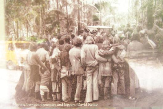 1979 Terania Creek Rainforest Protest
