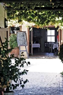 Terroir Entrance