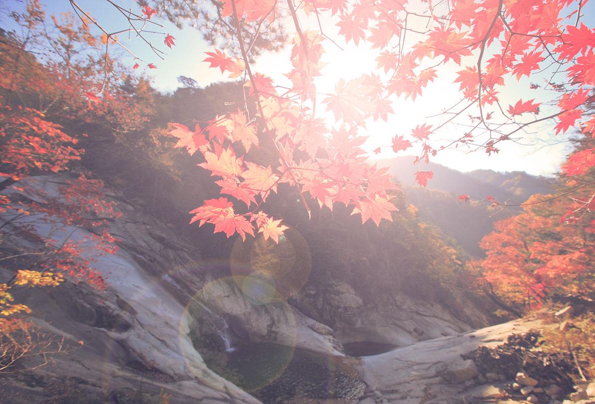 Mt. Seorak Fall Season Tour