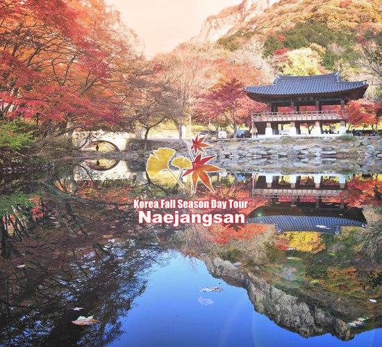 Korea-Fall-Season-Tour-NAEJANGSAN-tour