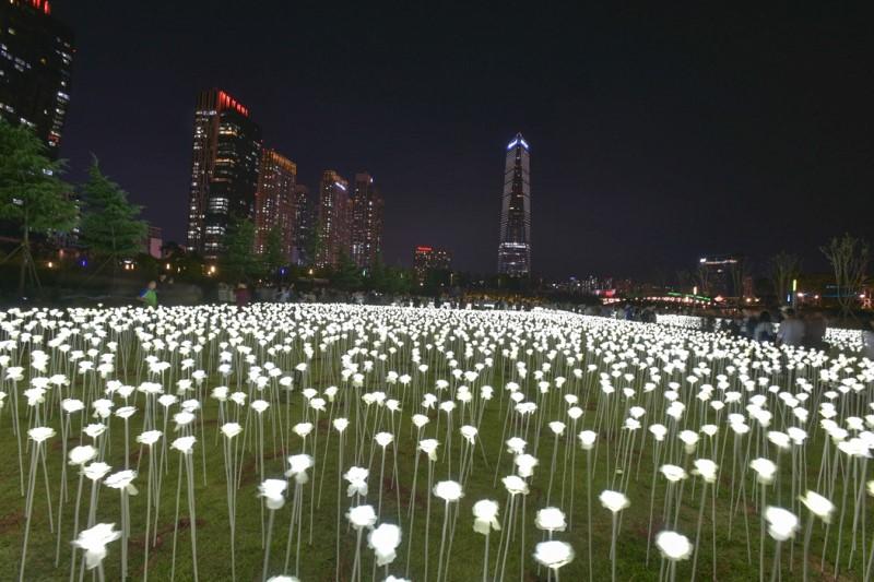 Incheon Songdo Light Festival