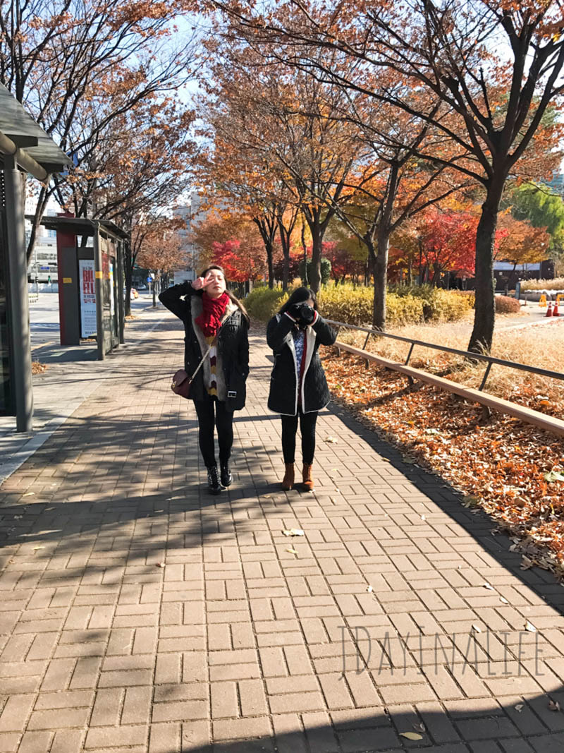 When in Seoul 10-day itinerary – Day 2: Seoul Forest, Ewha Womans University, Cheonggyecheon Stream