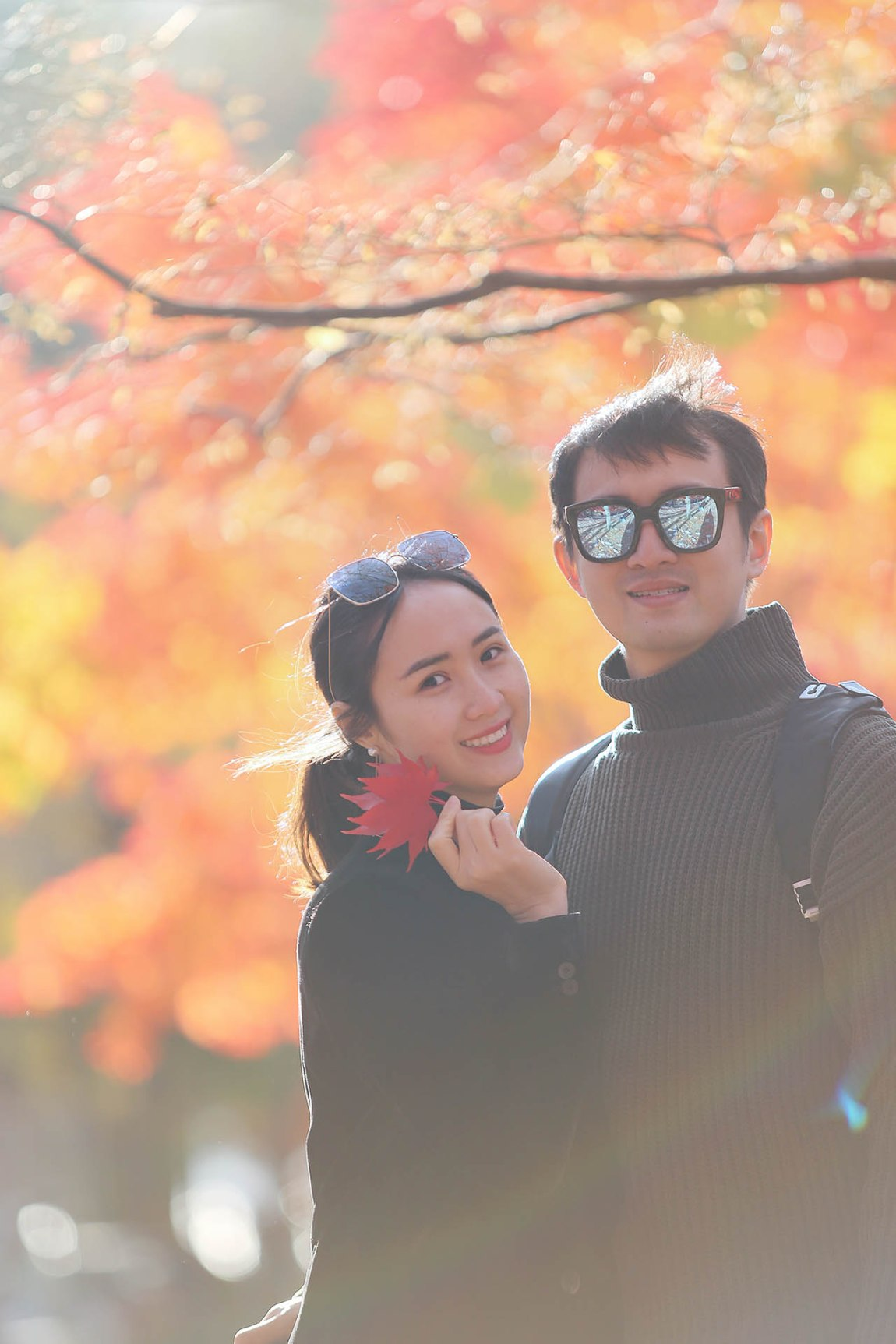 Why don't you take a photo trip to Nami Island this fall?