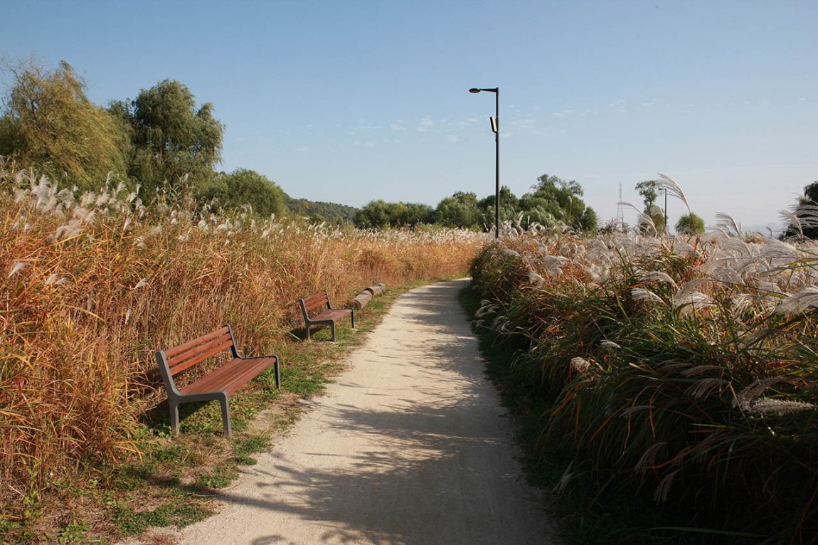 4 Best Autumn Trails at Hangang Park in Seoul