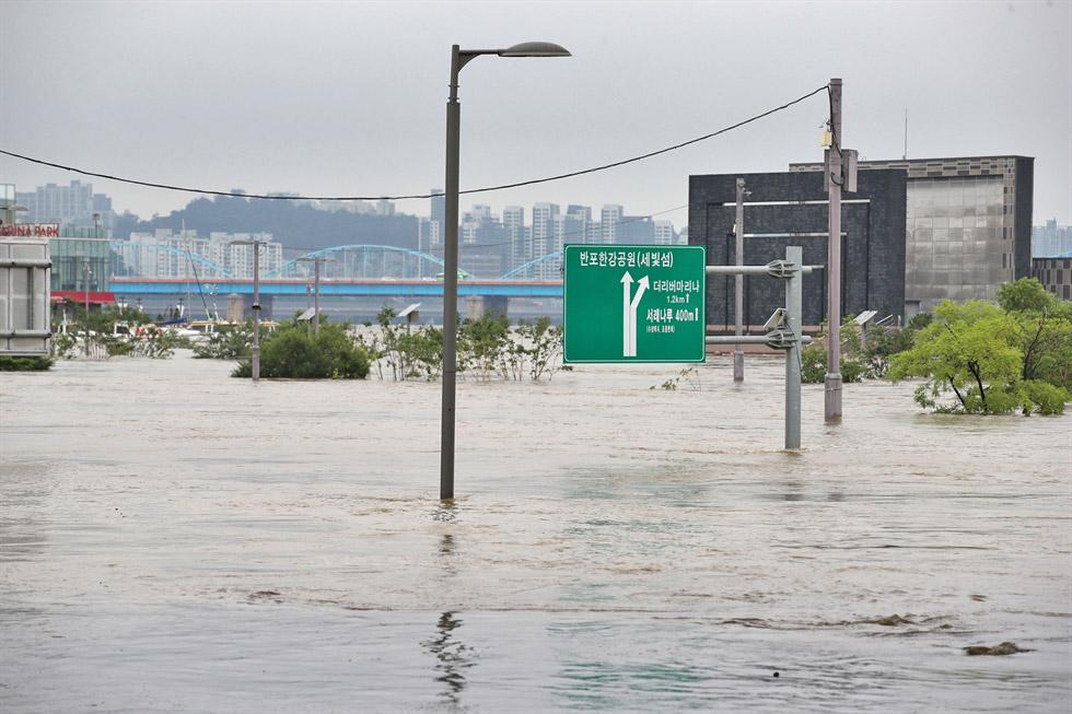 heavy rain in Korea