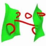 Branas en color verde. Cuerdas en color rojo. Si las cuerda es abierta, sus dos extremos pueden estar en la misma brana o en diferente. Si la cuerda es cerrada puede moverse libremente.