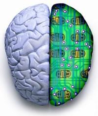 La actual metáfora del ordenador equipara el funcionamiento del cerebro al de un ordenador.