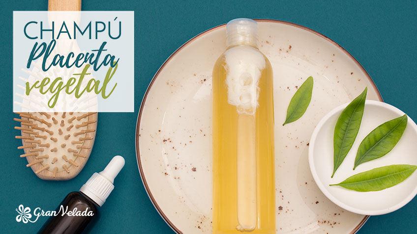 Aprende como hacer en casa Champu de placenta vegetal con vídeo y paso a paso