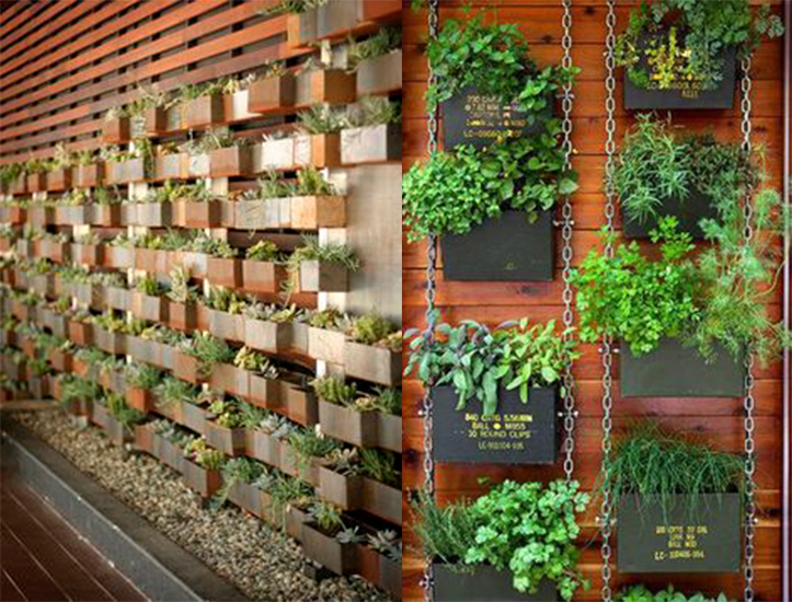 jardin vertical 4