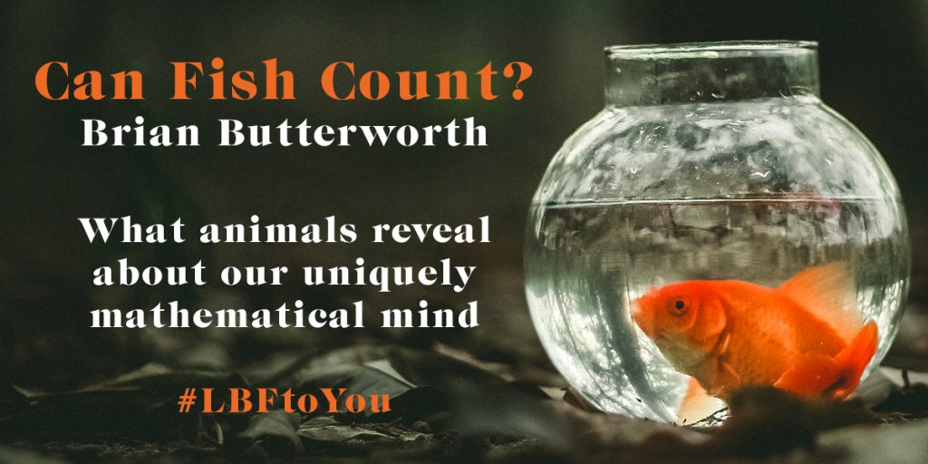 Can Fish Count