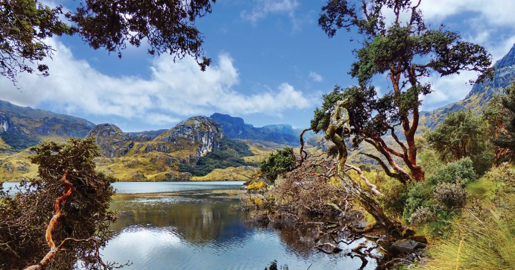mountain reflecting in a lake lagoon surrounded by trees in Ecuador
