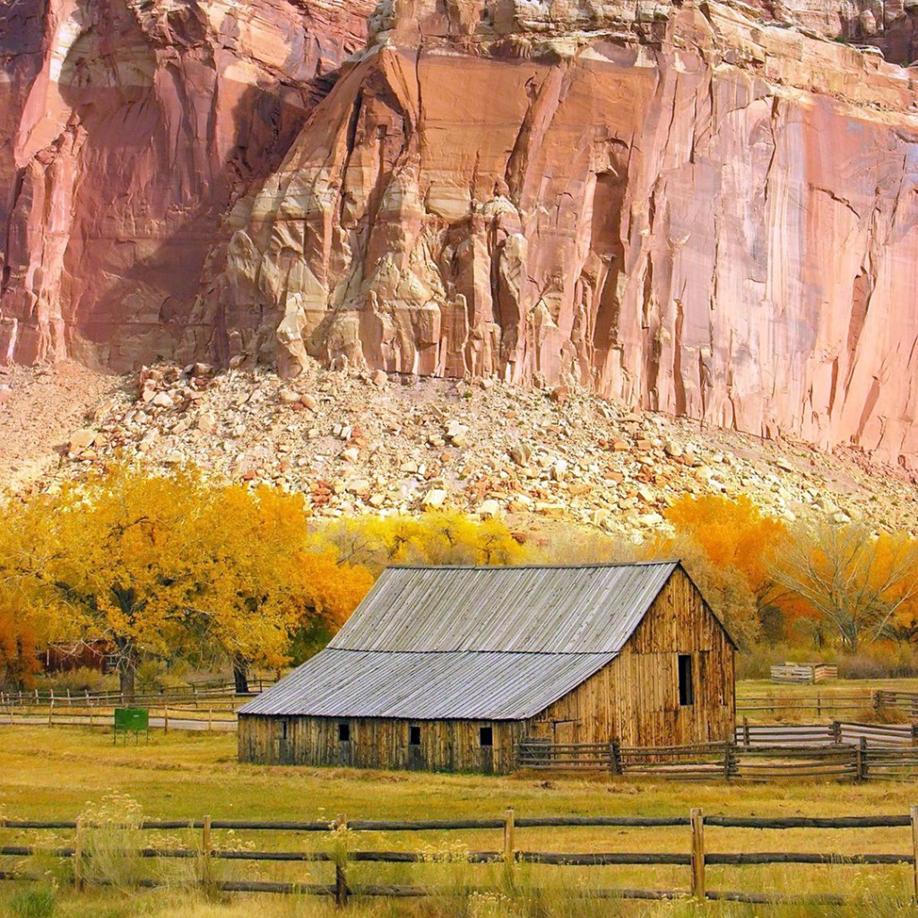 The barn of the pioneer Gifford Farmhouse in Capitol Reef