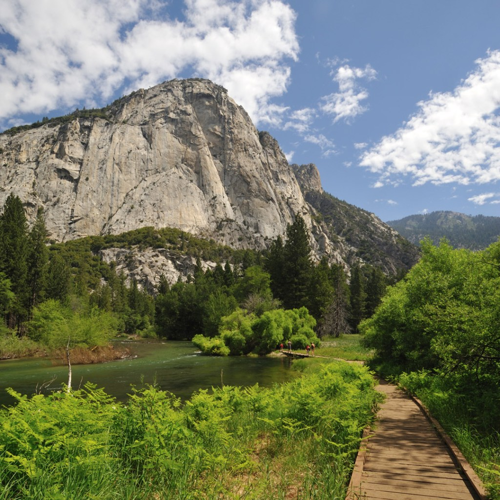 a boardwalk in kings canyon leading through a meadow with a granite landform in the distance