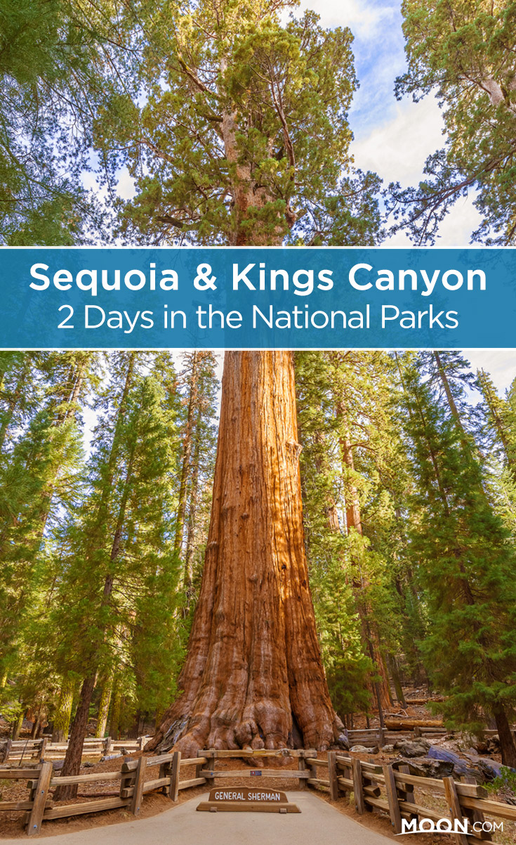 sequoia and kings canyon pinterest graphic
