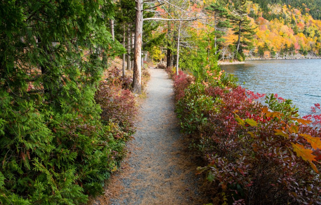 A hiking path curves through fall foliage along the shore of Jordan Pond in Acadia National Park
