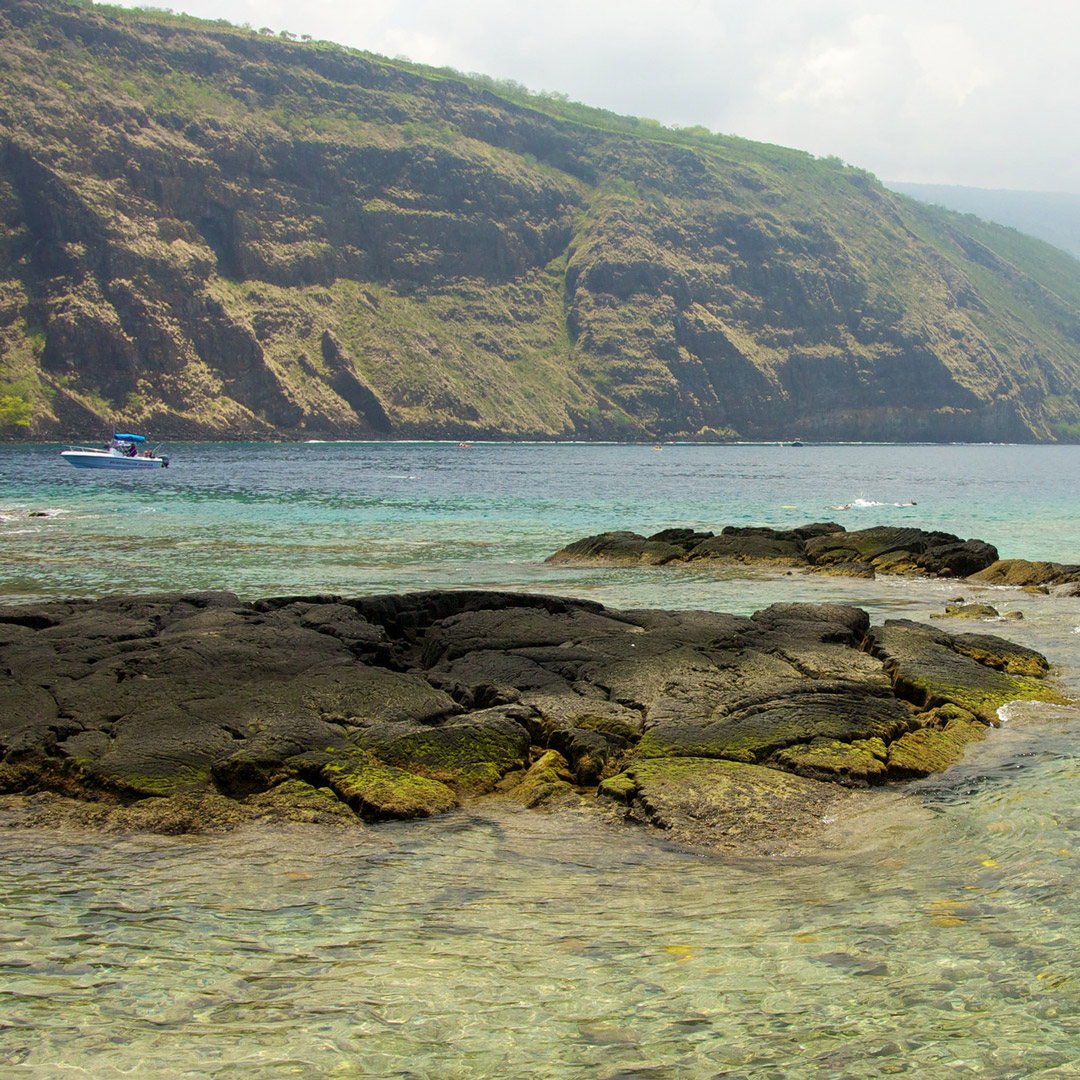 clear water of Kealakekua Bay in South Kona