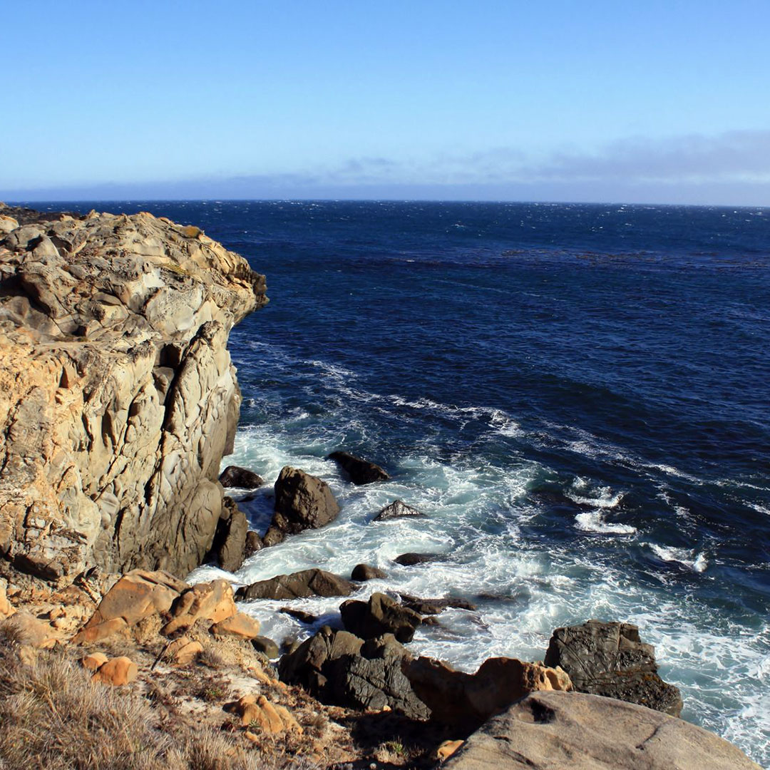 Coastal view from Salt Point State Park.